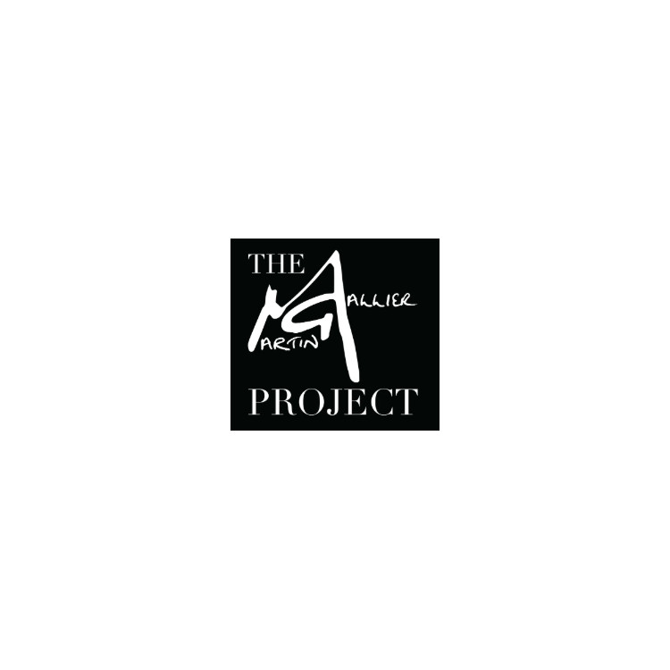 The Martin Gallier Project